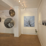 Laterna Magica Gallery, Momentary Melodies exhibition